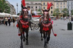 Het worden goede weken voor de koetsen op het centrale plein van Krakau, Foto MK